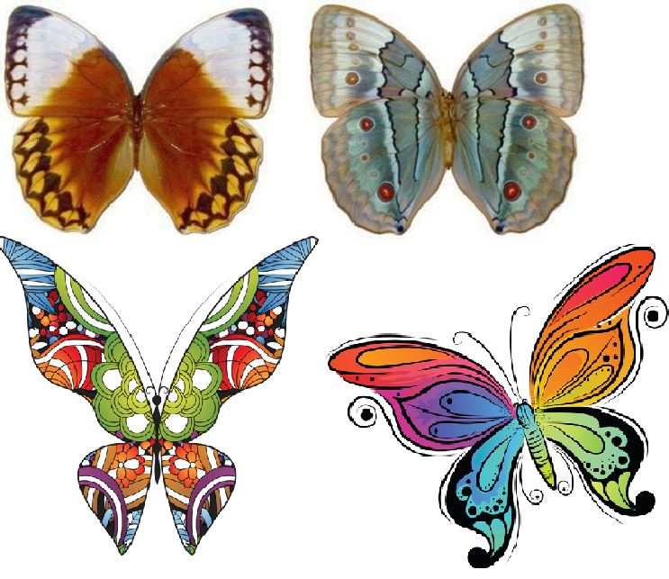 Lady perfection magazine f minin comment faire des papillons - Decorer une bouteille en plastique ...